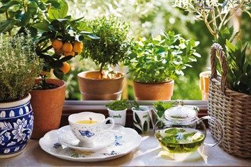 Успокаивающие травяные чаи для лечения гипертонии