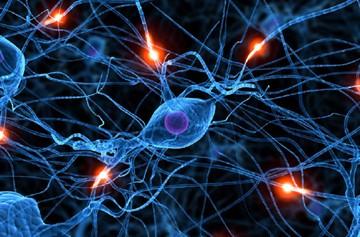 После магнезии болит голова: последствия, причины возникновения, рецепты, стадии