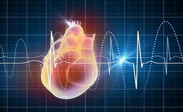 Изображение - Таблетки от давления тарка Virtual-heart_360x220
